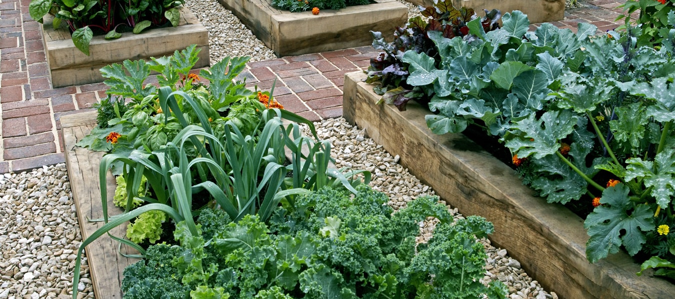 Landscape And Garden Supplies Landscape and garden supplies in humble and missouri city we supply only natural and organic soil for your vegetable garden workwithnaturefo